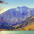 """""""Mount Morrison"""" by Lynn Bawden"""