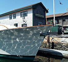 Sun Reflections on the Bow by Jane Neill-Hancock