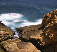 """Don't look down!"" ∞ Bermagui, NSW - Australia by Jason Asher"