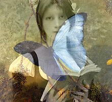 Butterflies do not lie by Nightingale