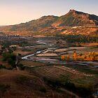 Hama Ba - Toad Dam #2 by Jason Pang, FAPS FADPA