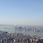 Hudson River by Julie Paterson