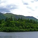 Derwentwater View IV by Tom Gomez
