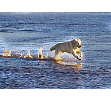 Run Free Photographic Print