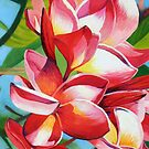 Frangipani Morning by Graeme  Stevenson