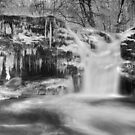 Winter at Upper Twin Falls by Lori Deiter