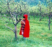 Red Riding Hood by ivDAnu