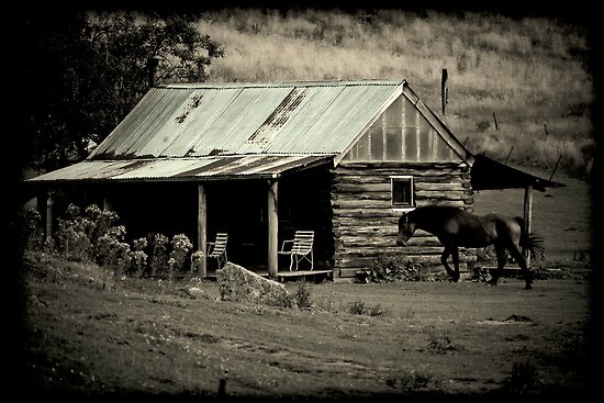 All you need in life is a Horse and a Hut by Andrew Wilson