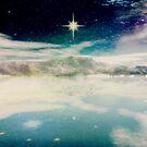 The Polar Star by Vanessa Barklay