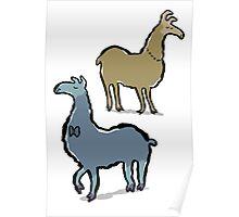 llamas with an attitude Poster