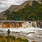 Salmon Fishing at Aasleagh Falls by Derek Smyth