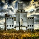 Grain Silo D by Lea Valley Photographic