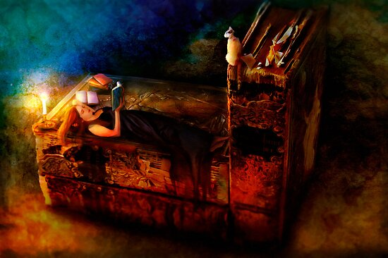 Ex Libris by Aimee Stewart