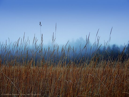 Foggy Morning by rocamiadesign