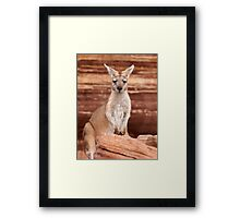 "Euro ~ ""Who's looking at who"" Framed Print"