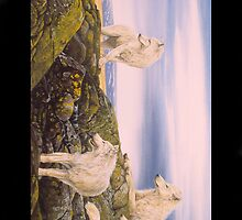 Arctic Wolves - Iphone by Graeme  Stevenson