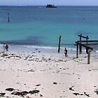 Hamelin Bay by Robyn Forbes