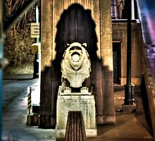 The Lion Guard (HDR) by James Zickmantel