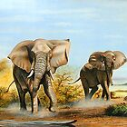 African Elephants threatening by Mutan