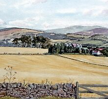 Over Migvie farm from gate at the double dykes by Joyce Grubb
