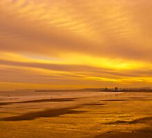Golden beach and sky by David Hall