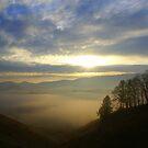 Mountain Valley Sunrise by Annlynn Ward
