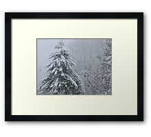It's Snowing Framed Print