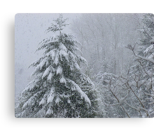 It's Snowing Canvas Print