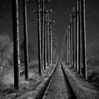 The Tracks Less Traveled by Sheri Bawtinheimer