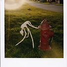 Tape dog, Tapedog. 3. peeing on fire hydrant  by Jason Franklin