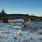Bridge Over The River Wansbeck by David Pringle