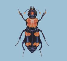 American Burying Beetle Kids Clothes