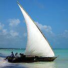 Sail Away by John Dalkin