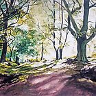 Kate's Wood,Kirriemuir,Angus,Scotland by Joyce Grubb