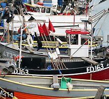 Brighton fishing fleet by Tony Steel