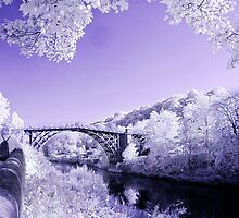 Ironbridge by Phiggys