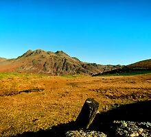 Across Lingmoor Fell by John Hare