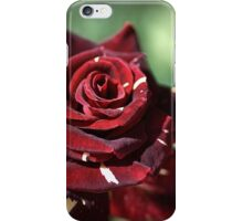 Blood Rose iPhone Case/Skin