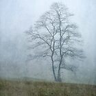 Tree in the Mist by TraceyTilsonArt