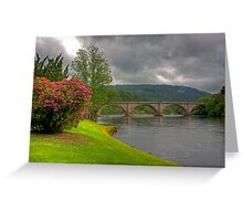 Rhododendrons by the River Greeting Card