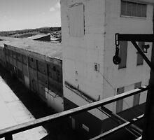 The Old Mill - Launceston Tasmania by spyke