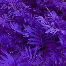 Purple Ferns - HSL Beauty by Jane Neill-Hancock