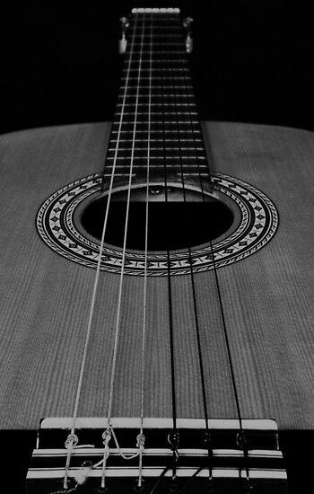 the guitar by RodrigoVSQ