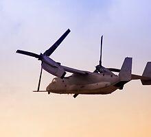 Osprey In Flight Series 4 of 4. by RickyBarnard