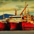 Red Ships at Ushuaia by Peter Hammer