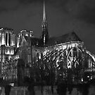 Notre Dame 2 by wendys-designs