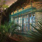 Barred Windows At Historic Atalaya Castle by Kathy Baccari