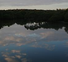 Reflections at White Patch by STHogan