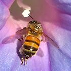 Bee for iPhone by MaaikeDesign