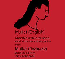 Definition of a Mullet by Mitchthe